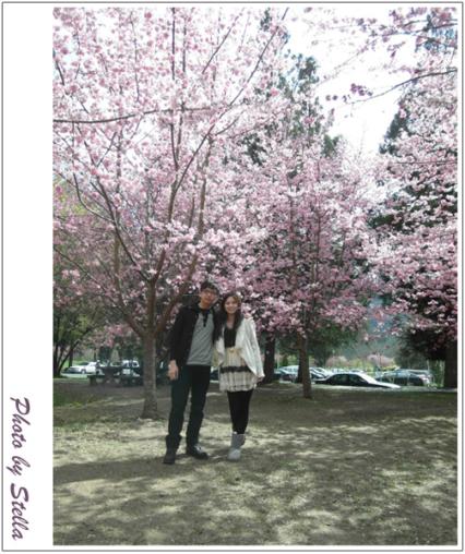 ♥遊記♥武陵農場花爭艷,人比花嬌(噗></noscript>//////