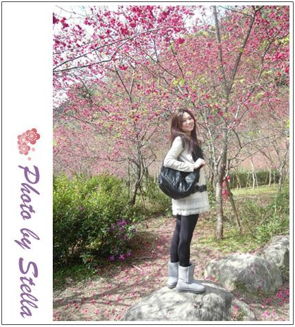 ♥穿搭♥淘寶淘到兩個美包,質感超級讚又划算,大推薦啊!!