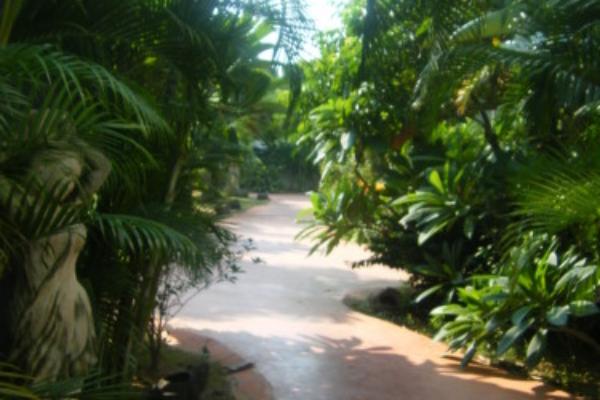 ♥吃喝玩樂♥宛如置身峇里島的八村villa民宿