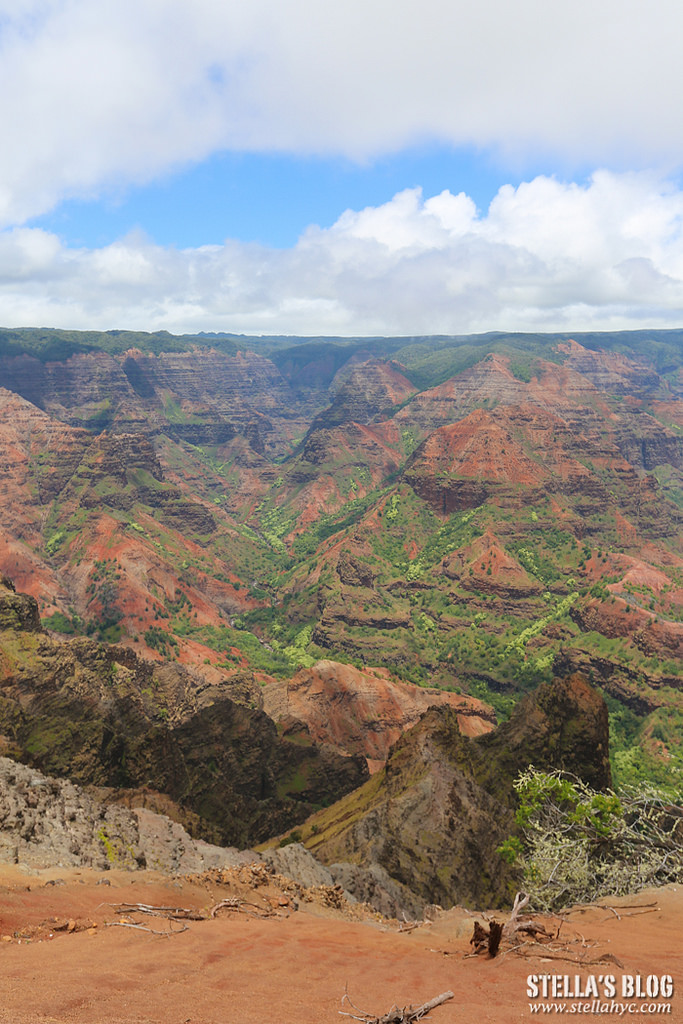 【夏威夷-可愛島】推薦景點,Waimea Canyon、Movie Tour:Wailua Falls、Moloaa Bay、Tahiti Nui Restaurant等