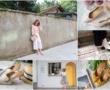 【新家開箱】歡迎光臨我們輕奢時尚風的家,老屋改造大變身,每個角落都是我的攝影棚!